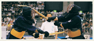 pic_kendo_about_kendo_02