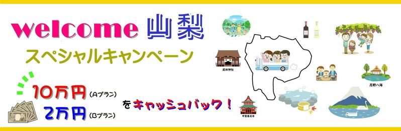 yamanashicash2