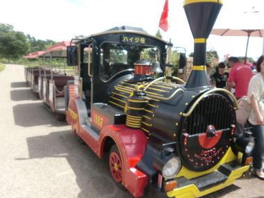 CIMG3006