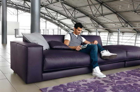 Natuzzi-Nicolaus-Sofa-Design-With-Color-Purple