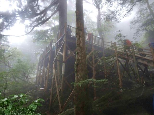 縄文杉の展望台