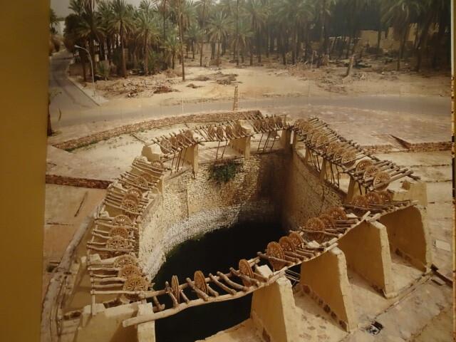 灌漑用の井戸ラクダが活躍