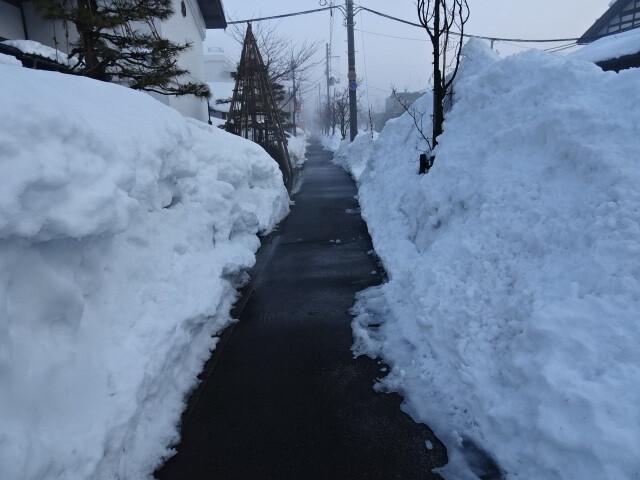 道路の歩道