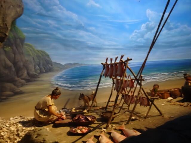 縄文の暮らし海辺