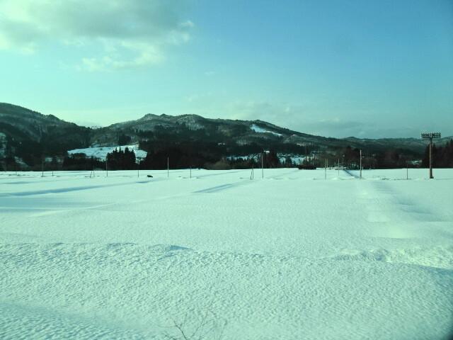 雪原を走る