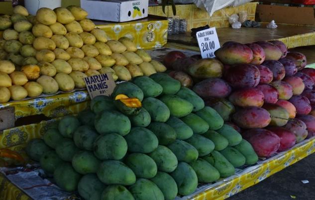 マンゴー市場