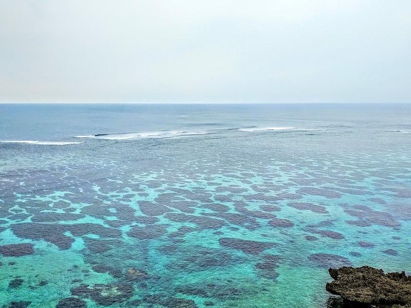 サンゴの海