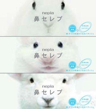 【海外の反応】「繰り返し見ちゃうね。」日本のティッシュの動画が海外でもちょっと話題に。