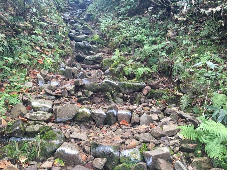 雨飾山 山道 岩