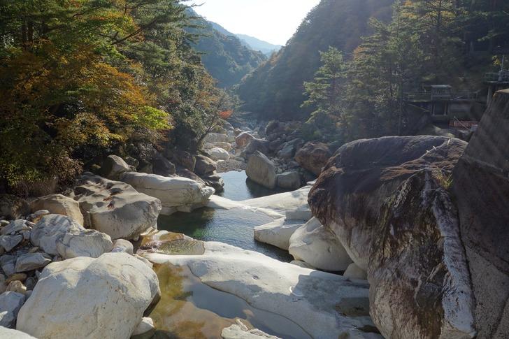 大崩山 林道 川