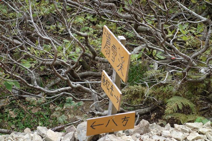 唐松岳 扇雪渓