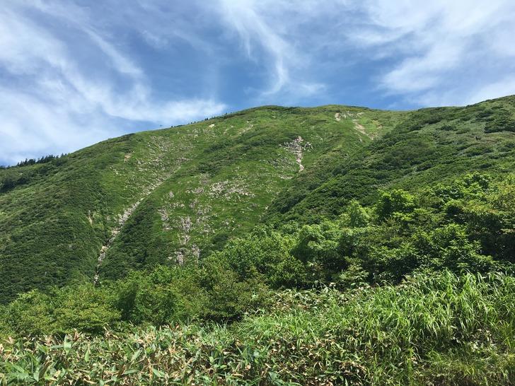 巻機山 7合目から山頂方面