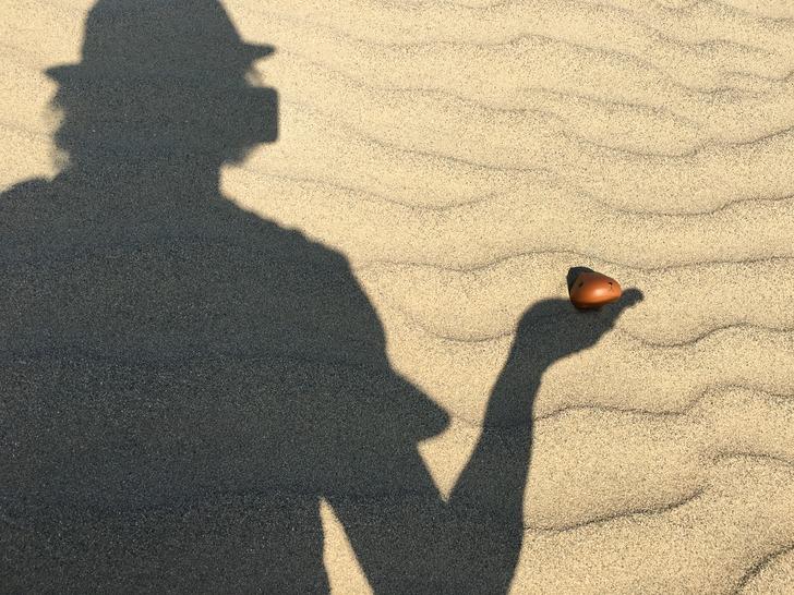 鳥取砂丘 カピバラさん
