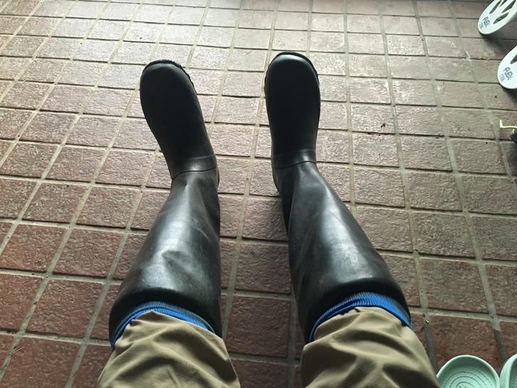 稲刈り 長靴