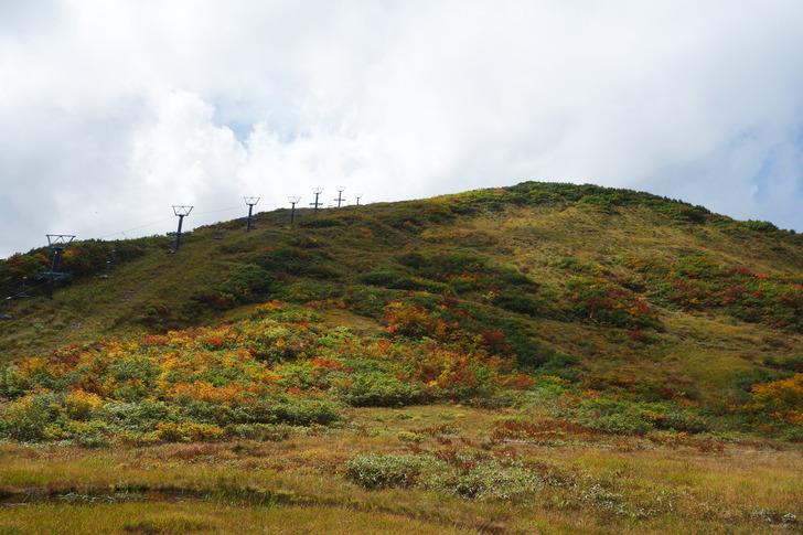八方尾根スキー場 紅葉
