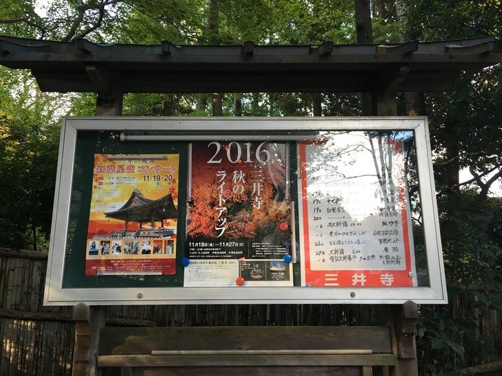 三井寺 秋のライトアップ