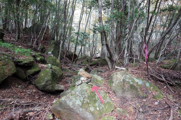 大崩山 二枚ダキコース 登山口