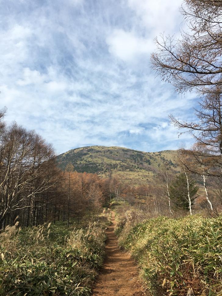 湯の丸山山道
