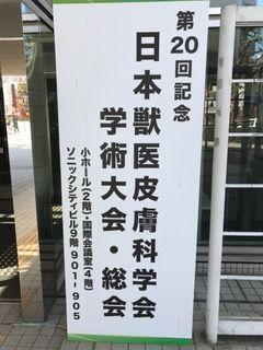 日本獣医皮膚科学会