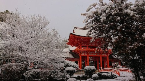 京都 上賀茂神社Iu