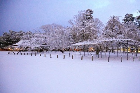 上賀茂神社 雪ss
