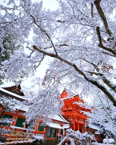上賀茂神社 雪r