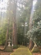 若狭彦神社、姫神社_191126_0002