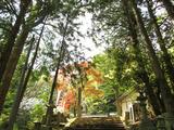 IMG_7246金毘羅神社