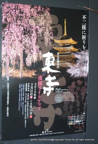 京都 新聞 購読 キャンペーン