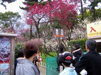 梅花祭12