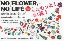 もっと花!