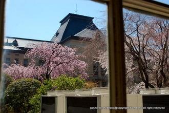 京都府庁中庭