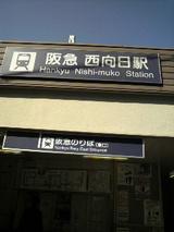 b9e4e116.jpg