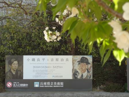 180328サクラ咲く兵庫県立美術館
