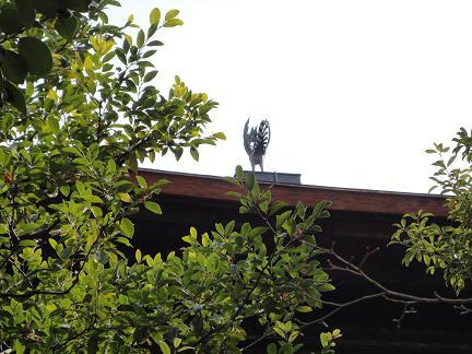 銀閣寺20110218