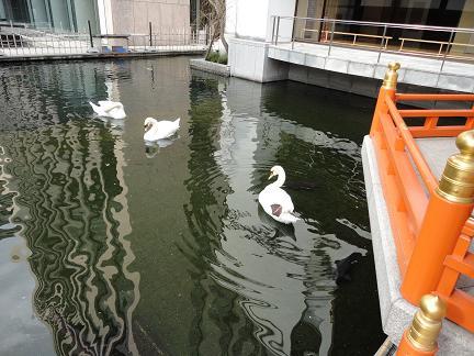 六角堂2011012307