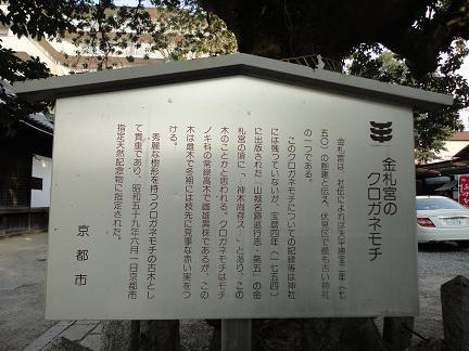 伏見2011020502