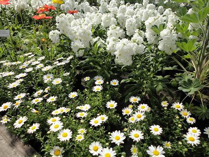 植物園20110203