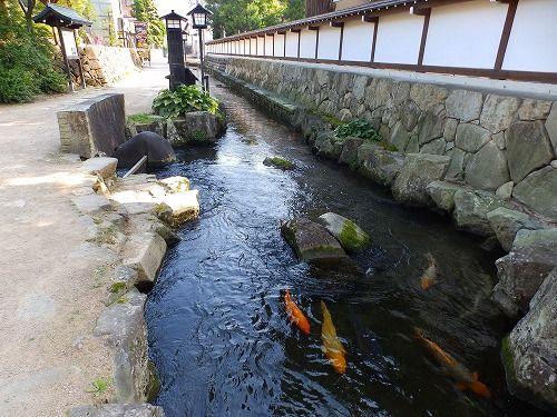 飛騨古川 : 知音の旅人