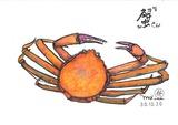 01:石川県の加納蟹