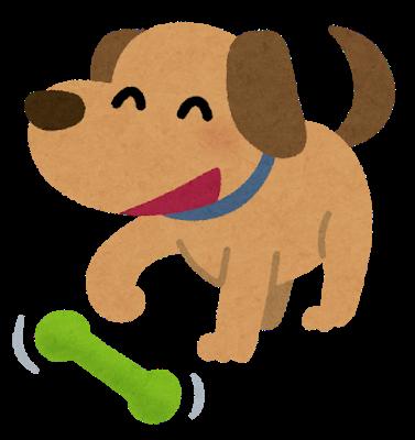 【悲報】辻希美、愛犬との戯れを報告した結果wwwwwwwwww