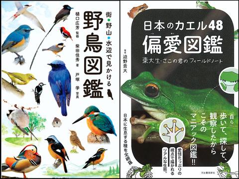 最近読んだ本:『街・野山・水辺で見かける野鳥図鑑』『日本のカエル48 偏愛図鑑』