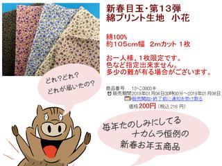 ナカムラ新春目玉生地 (2)