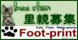Foot-print
