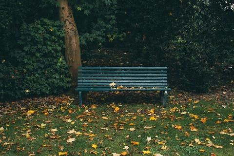 bench-1031124_960_720
