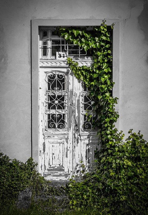 door-819266_640