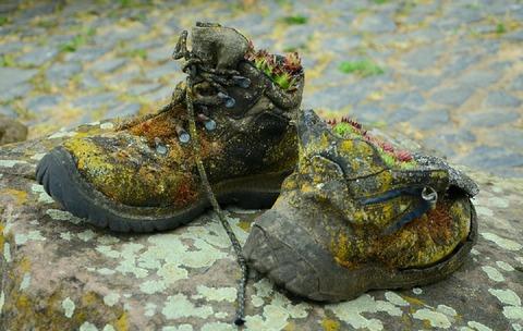 shoes-784698_960_720