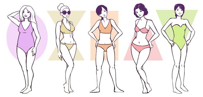 「体型」の画像検索結果