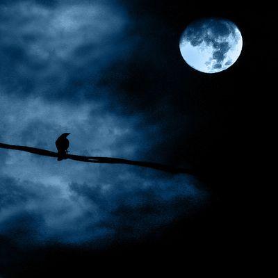 月の魔力18