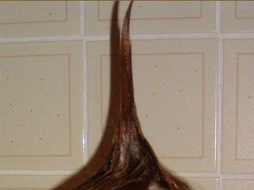 ユニーク髪型00